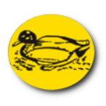 Illustration du profil de Canards de la Montagne Noire